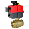 Electric Actuated Brass Ball Valves - Multi-Voltage